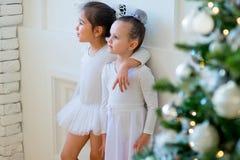 Balletttänzerumarmung mit zwei Jungen nahe Weihnachtsbaum Stockfotografie