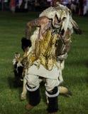 Balli con il lupo Immagine Stock Libera da Diritti