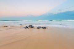 Ballina, NSW,澳大利亚 库存照片