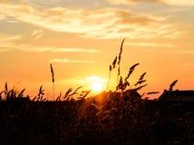 Ballintoy на заходе солнца Побережье антрима, Северная Ирландия Стоковая Фотография RF