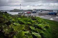 Landscape of Ballintoy Harbour, Northern Ireland. Ballintoy Harbour and Village are located alongside the B15 coast road, 17 miles north-east of Coleraine and royalty free stock image