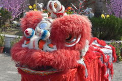 Ballo cinese del leone Fotografia Stock