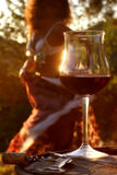 Ballo del vino Immagine Stock