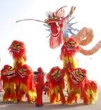 Ballo di leone cinese Fotografie Stock