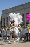 Ballo di piega messicano Fotografia Stock Libera da Diritti