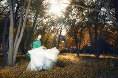 Ballo nella foresta dorata Immagini Stock