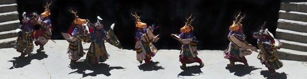 Ballo tibetano della lama buddista nella renna gialla delle maschere ed in renna blu, Himalaya, India del Nord, panorama della fo Fotografie Stock Libere da Diritti