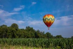 Ballon à air chaud coloré au-dessus de champ de maïs sur Sunny Day avec les arbres et le ciel bleu nuageux Photo stock