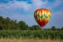 Ballon à air chaud formé par larme colorée au-dessus de champ de maïs sur Sunny Day avec les arbres et le ciel bleu nuageux Images stock