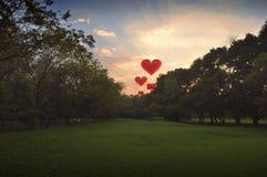 Ballon à air de forme de coeur sur le ciel en parc Image stock