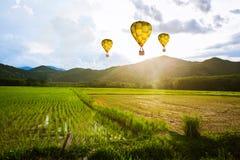 Ballon που πετά κατά τη διάρκεια του πρωινού τομέων ρυζιού Στοκ Εικόνες
