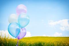 Ballon coloré au-dessus des gisements de fleur jaunes avec le backgro de ciel bleu Photos stock