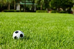 Ballon de football Futbol sur l'herbe Photo libre de droits
