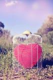 Ballon en forme de coeur dans une cage à oiseaux dans le domaine, avec un rétro fi Photographie stock