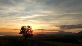 Ballon im Sonnenuntergang Lizenzfreie Stockfotografie