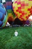 ballon wrangler royalty-vrije stock afbeeldingen