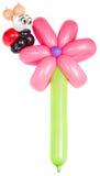 Ballonbloem met lieveheersbeestje Stock Foto