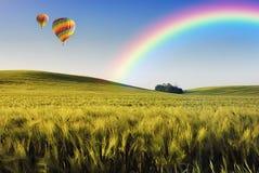 Ballone über dem Feld Stockfotografie