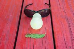 Ballone, Blätter, Gläser - wie menschliches Gesicht Lizenzfreies Stockbild