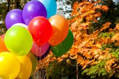 Ballone in der Herbstpark Gelb-Herbstzeit Lizenzfreie Stockbilder
