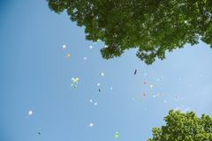Ballone I der Himmel Lizenzfreies Stockbild