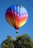 ballong över tree Royaltyfria Bilder
