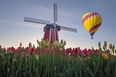 Ballong för varm luft över Tulip Field Royaltyfri Fotografi