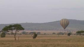 Ballong för varm luft i Serengetien arkivfilmer