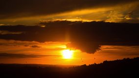 Ballonger för varm luft framme av solnedgången arkivfilmer