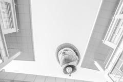 Ballonger för varm luft i svart & vit Royaltyfri Bild