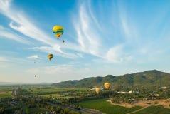 Ballonger för varm luft som svävar ovanför vingårdar Fotografering för Bildbyråer