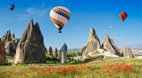 Ballonger för varm luft som flyger över ett fält av vallmo, Cappadocia, Turkiet Royaltyfri Foto