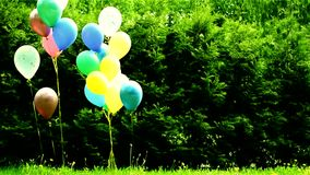 Ballonger - garnering av barns ferie i natur lager videofilmer
