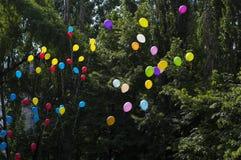 Ballonger i himlen mot träd, skolan för sista appell Royaltyfria Bilder
