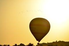 Ballonger tar flyg Arkivbild