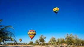 Ballons à air chauds au-dessus des vignobles photos libres de droits