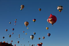 Ballons à air chauds avec l'oiseau fâché Photos stock