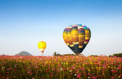 Ballons à air chauds colorés Photographie stock libre de droits