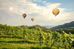 Ballons à air chauds volant au-dessus des vignobles le long de la route du sud de vin de Styrian, Autriche photo stock