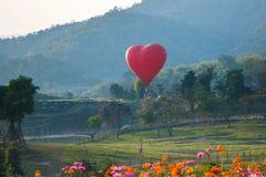 Ballons, Ballons in hemel, Ballonfestival, Internationale de Ballonfiesta 2017, Chiang Rai, Thailand van Singhapark Stock Foto's
