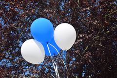 Ballons bleus et blancs Photo stock