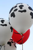 Ballons d'impression de vache Image stock