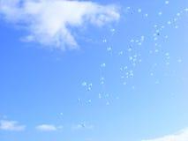 Ballons dans le ciel Image stock