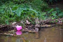 Ballons de coeur sur le canal photographie stock