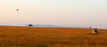 Ballons do ar quente sobre o parque de jogo de mara do Masai imagem de stock royalty free