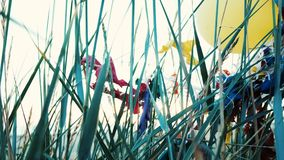 Ballons in het gras worden geplakt dat Ecologie en milieuvervuiling, huisvuil op het overzees stock videobeelden