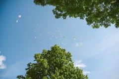 Ballons i de hemel Stock Afbeeldingen