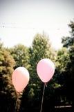 Ballons im Park Stockbilder