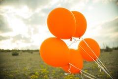 Ballons no campo Fotografia de Stock Royalty Free