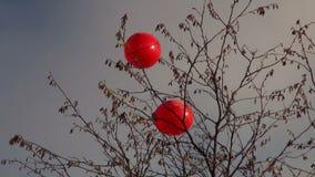 Ballons op een wind stock videobeelden